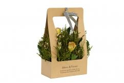 Розы кремовые стабилизированные в коробке